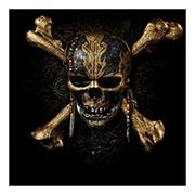 Хардпостер (на твёрдой основе) Pirates of the Caribbean